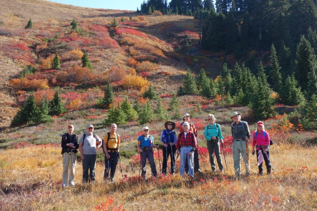 Eleven happy hikers in the meadow below Excelsior Pass